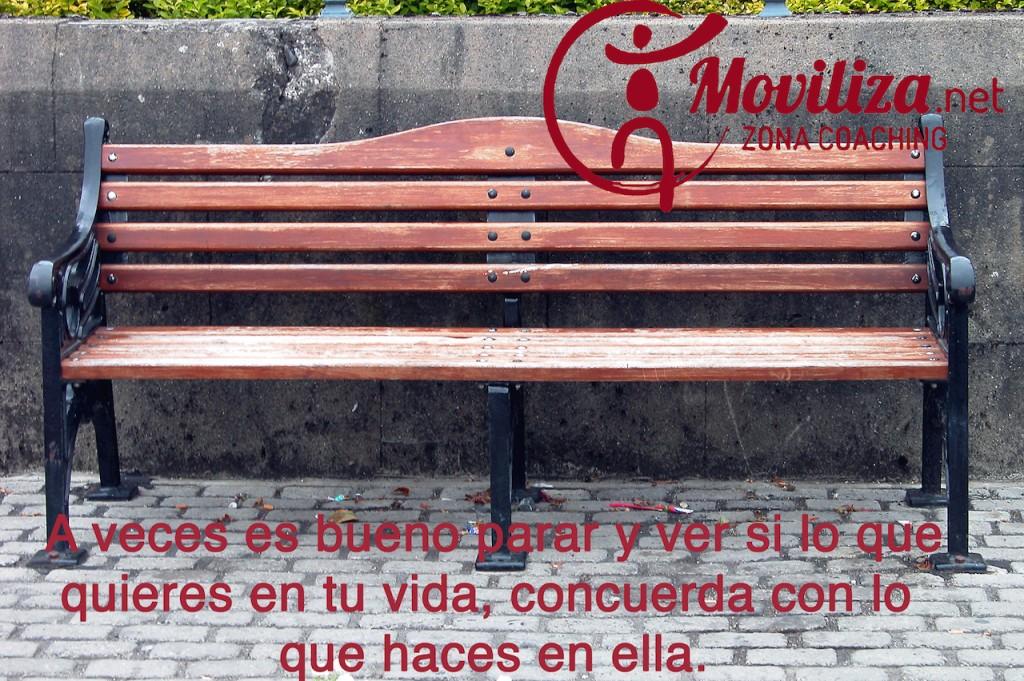 Moviliza13-cast