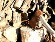 moviliza-destral